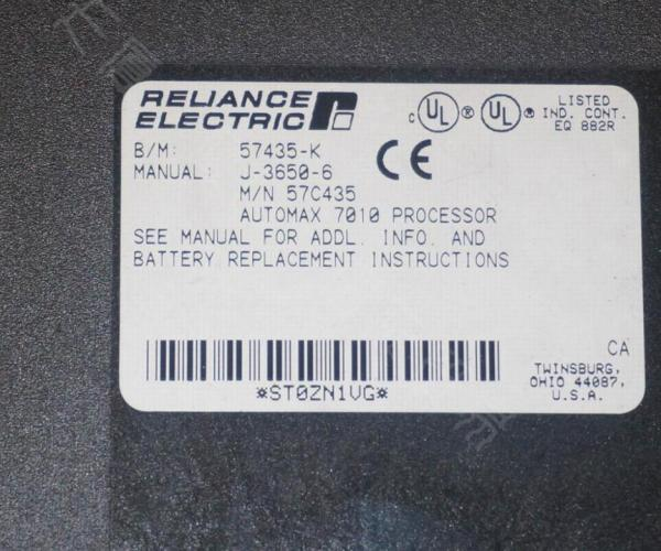 瑞恩RELIANCE ELECTRIC模塊61C365